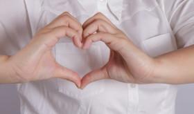 Shape of the heart